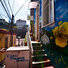 Welcome To Casa Fischer Hostel - Casa Fischer Hostal Valparaiso Chile South America