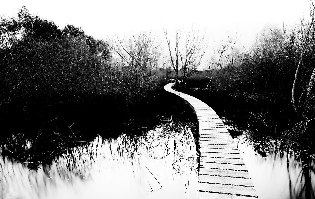 A Weaving Path Through the Wetlands I've revisited this path in Glenorchy a few times now. You'll see this in the new New Zealand video that is available now, by the way. I took a ton of different photos while there, but this one did not look so great in color. It was curious to me because there was something about the photo that I liked… but it looked so dull in color. And then I realized it was the shape and the contrast that was most interesting! So I decided to emphasize that with the black and white treatment using Silver Efex Pro.- Trey RatcliffClick here to read the rest of this post at the Stuck in Customs blog.