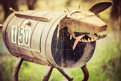 How to scare a mailman.