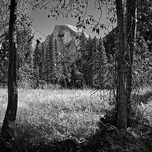 Half Dome from Cook's Meadow