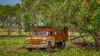 Texas_Field_Truck