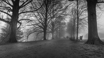 Kenwood House Fog