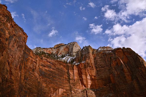 'Towering' ~ Zion National Park, UT