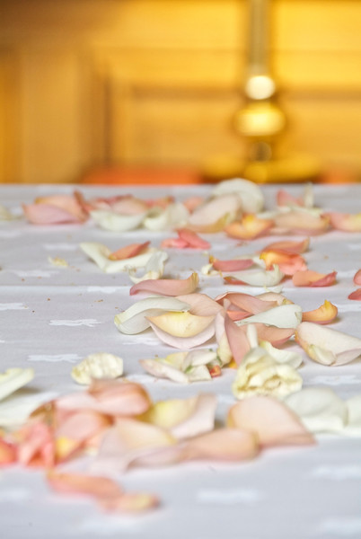 Rose Petals at the Wedding reception