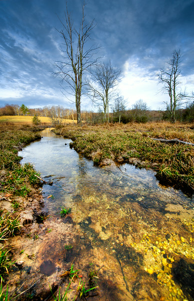 """Stream of Clarity"" - Finalist in the Appalachian Mountain Photography Contest"