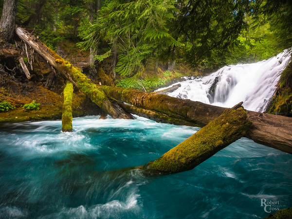 McKenzie River Blue & Green