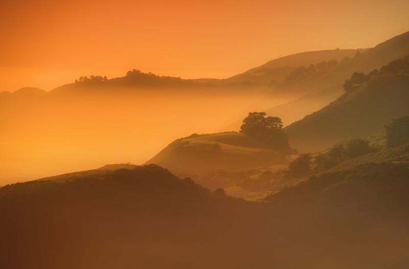 The Pacific Sea Mist