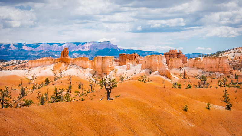 Travel_Photography_Blog_Utah_Bryce_Canyon_Layers