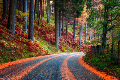 Autumn Road at the Elan Valley, Rhayader Dams, Wales