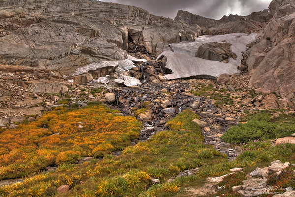 Meadow fed by snow melt along the Mt. Whitney trail