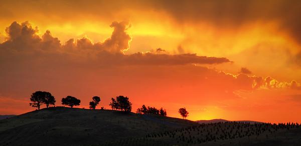 Golden Sunset over Dairy Farmer's Hill