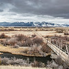 Blain Spring Creek Landscape, Madison Valley, MT