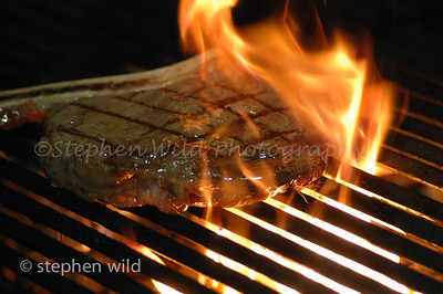 Grizzly Grill