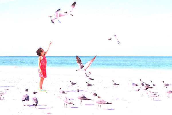 patience and bravery - a girl feeds seagulls by hand in Redington Beach, FL