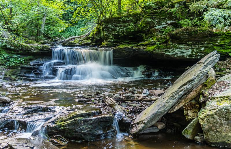 Delaware Falls
