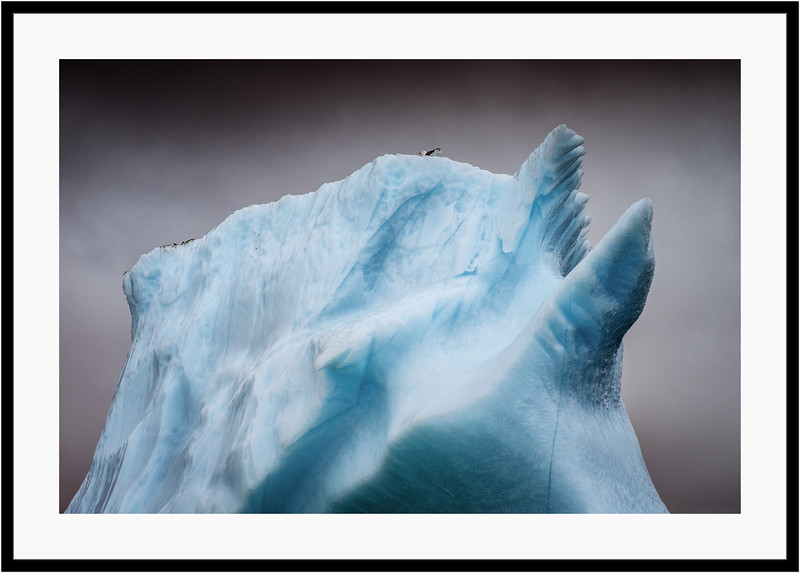 Iceberg Heights