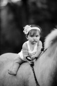 Katherine Thomas Photography