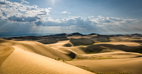 Evening Dune Field