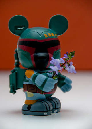 Boba Flowers