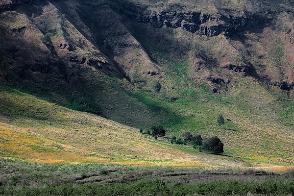Photograph: Hidden Savana - Light falling on the cliffs surrounding the savana within the Bromo-Tengger caldera.