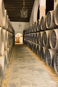 Sherry barrels at Tio Pepe