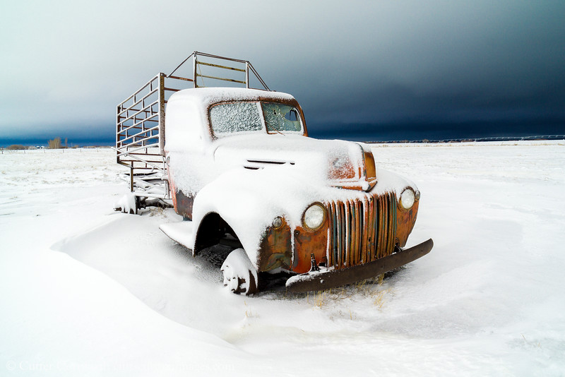 Frozen Stock Truck