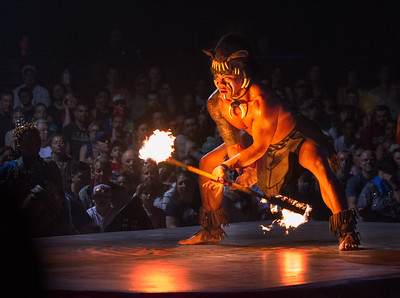 Lion King Show Fire Dancer