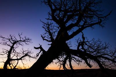 twilight time - Arches Moab Utah