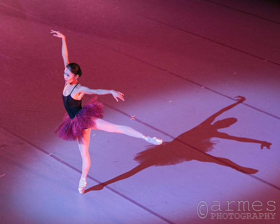 The Rite of Spring 2013, Carolina Ballet