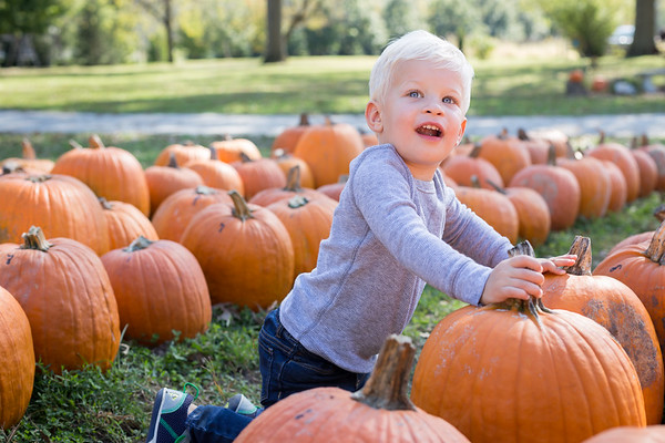 Child Portrait at the Pumpkin Patch