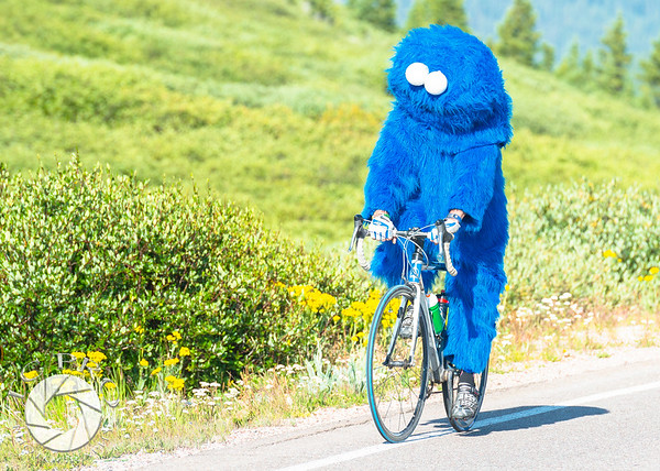 The Cookie Monster motors on up Independence Pass.