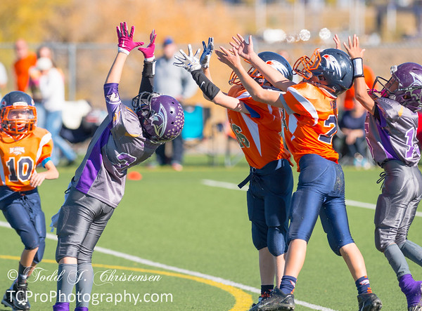 2015-10-31:  5th Grade.  Spartan Black vs Hawk Orange - Challenger Park