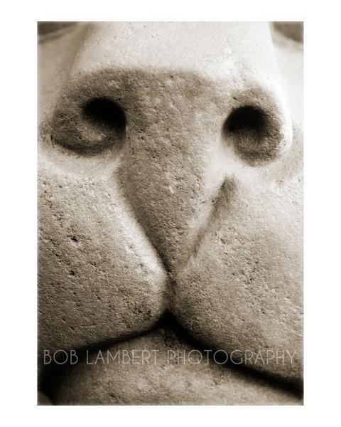 Lion's Mug