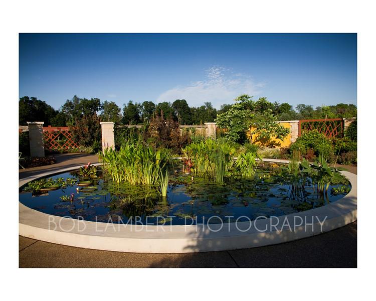Arboretum #3