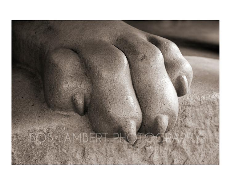 Lion's Paw #2