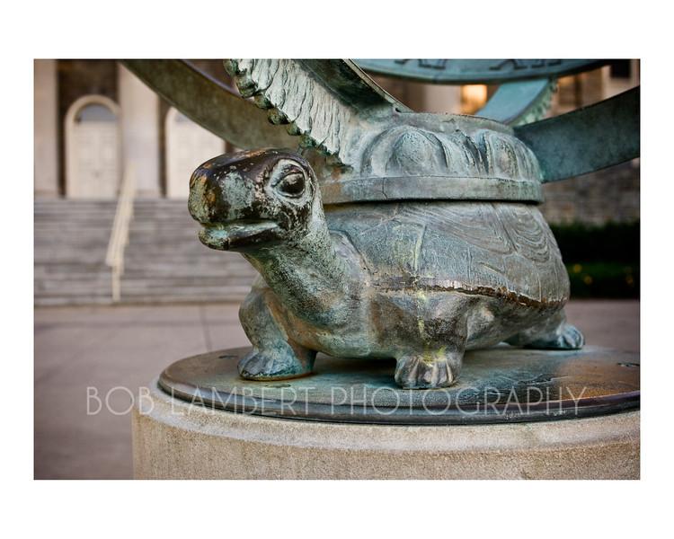 Penn State Turtle