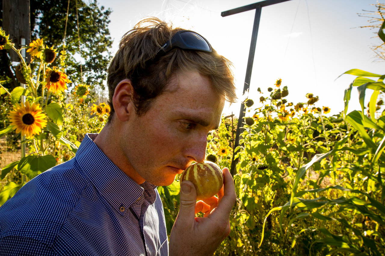 Samuel Schrock sniffs at a tomato to check its ripeness in his garden in Kenwood, California July, 27, 2014.