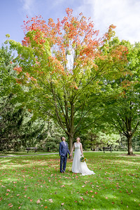 A married couple looks up at a tree changing colours in Prince Edward County