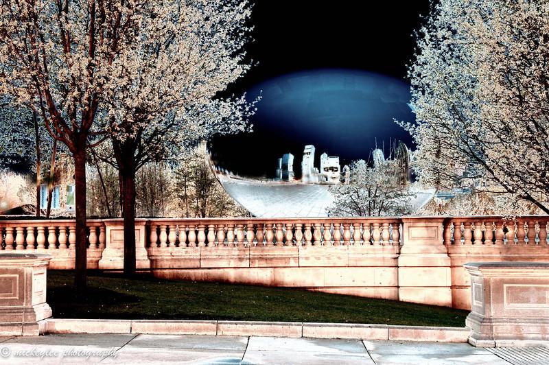 Millenium Park; Chicago, IL
