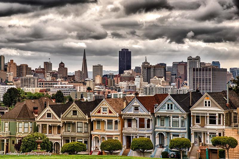 Painted Ladies; San Francisco, CA