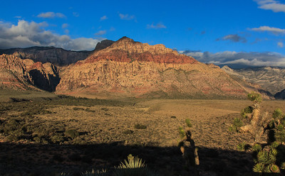 Day 312 - Red Rock Canyon