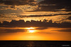 Park Shore  Sunset-2396