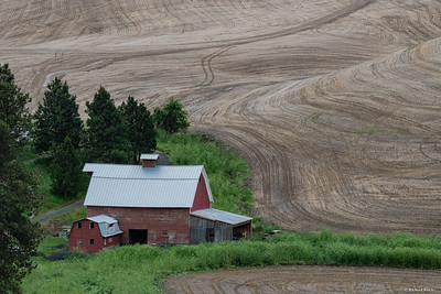 Best of Palouse-low res-4902