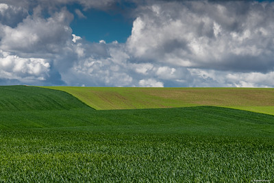 Best of Palouse-low res--5