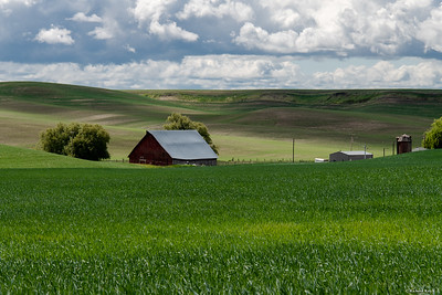 Best of Palouse-low res--6