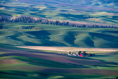 Steptoe Butte at Sunrise