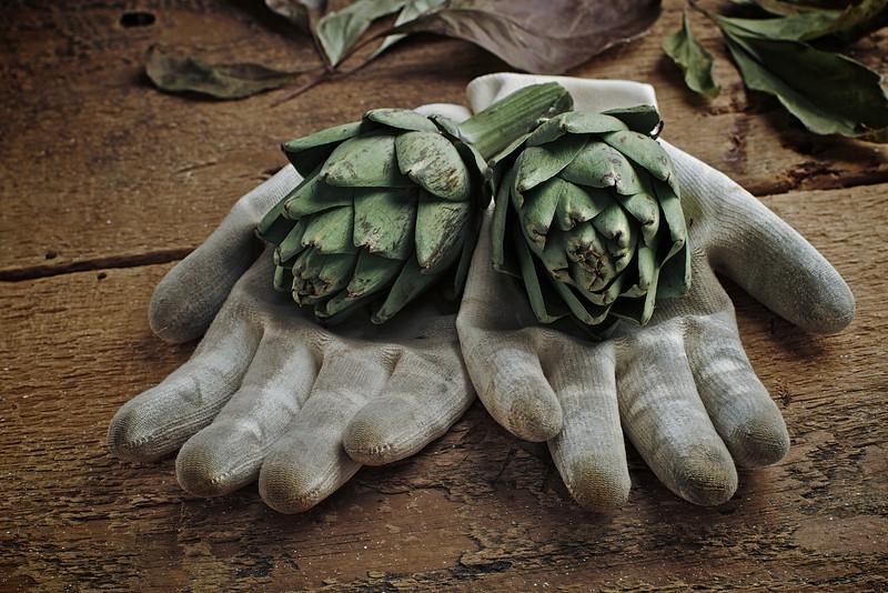 Artichoke Hands