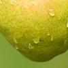 Pear Heavy
