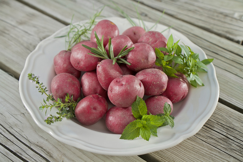 Red Potatoes on Deck