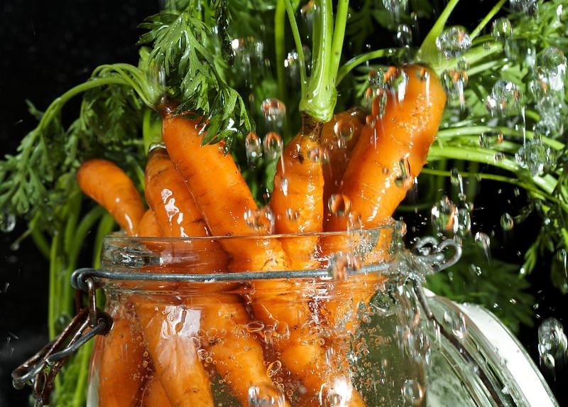 Carrot Splash